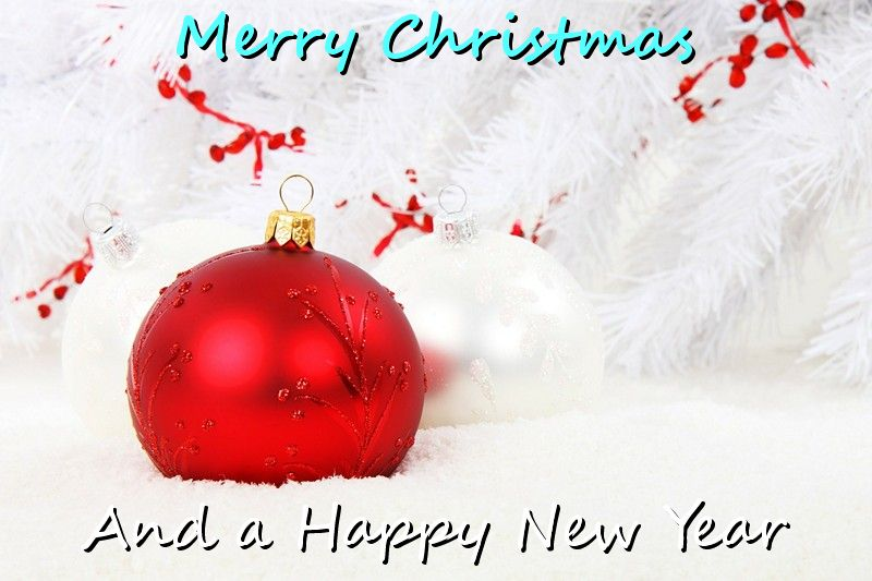 Happy Christmas and Happy New Year!