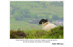 Psalm 100:3 - We are the sheep of His pasture