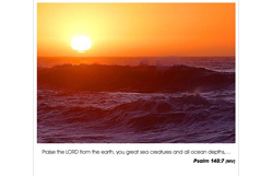 Psalm 148:7 - Praise the Lord from the earth